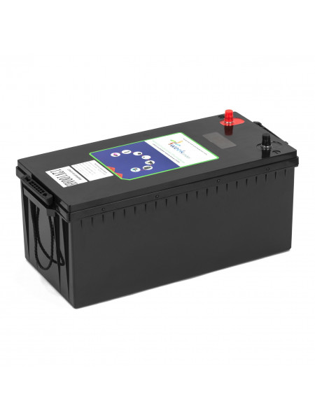 Литий-железо-фосфатный аккумулятор Weekender LiFePo-4 100 Ah 12V + заряд устройство